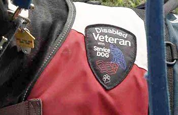 Northern Virginia Dog Trainers Off Leash K9 Dog Training