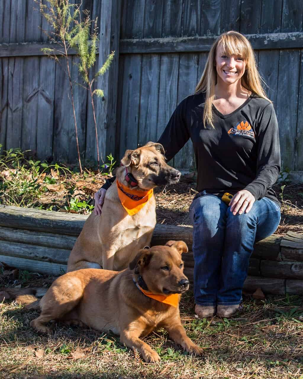 Off Leash Dog Training Prices
